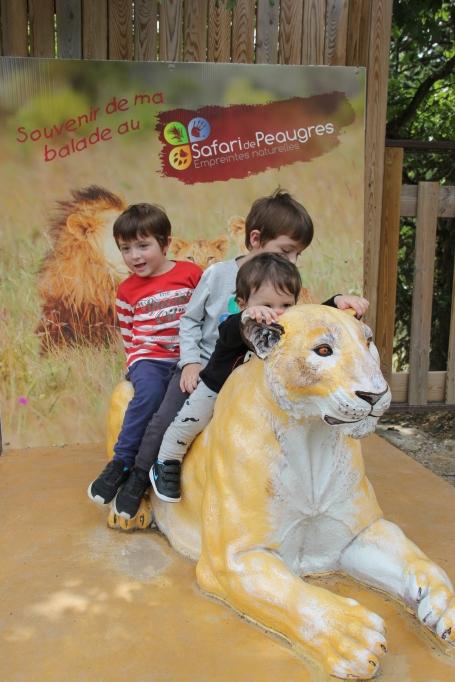 lion safari peaugres twinny mummy twinsou bébé love