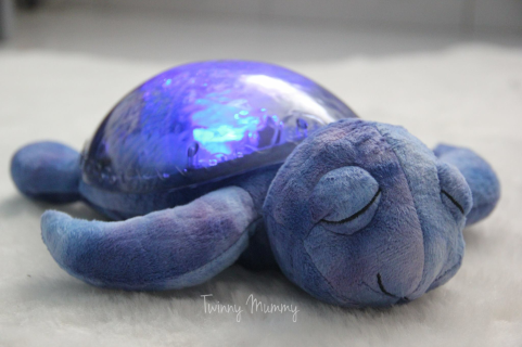 Tranquil Turtle™ - Ocean